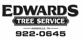 Tree Trimming Knoxville TN